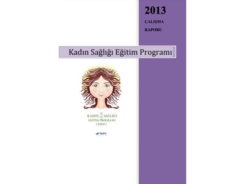 KSEP Çalışma Raporu _ 2013